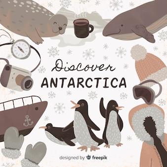 南極を発見
