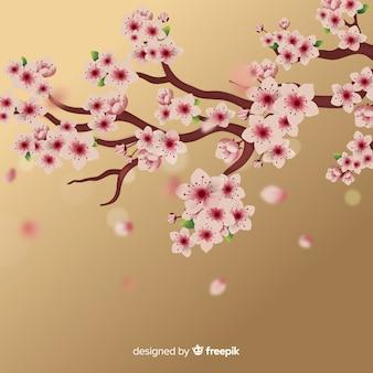 桜の枝の背景
