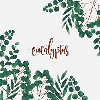 水彩ユーカリの葉の背景