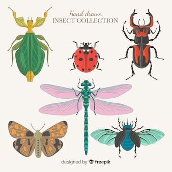手描き昆虫コレクション