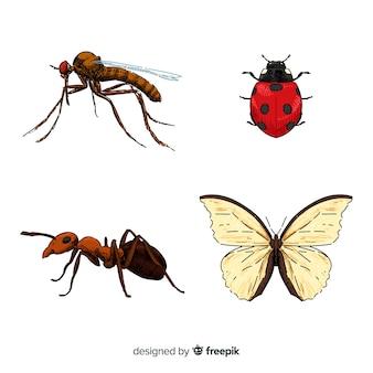 カラフルな手描きの昆虫コレクション