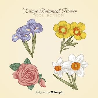 Коллекция старинных ботанических цветов