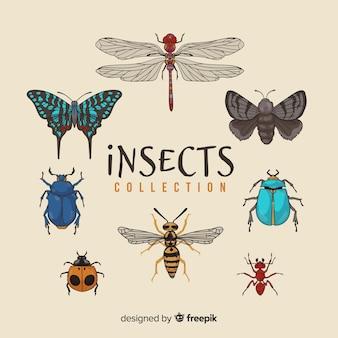 手描きの昆虫パック