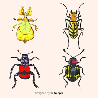 リアルな手描きの昆虫パック