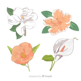 植物の花と葉のコレクション