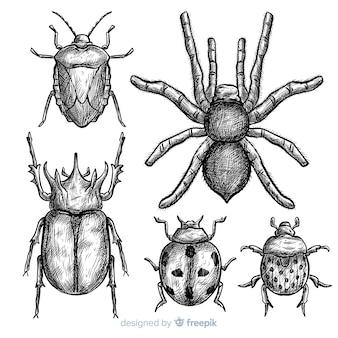 リアルな手描きの昆虫スケッチセット