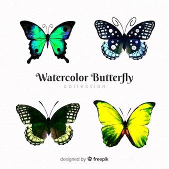 リアルな蝶コレクション