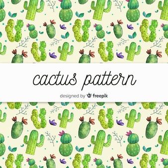 サボテンのパターン