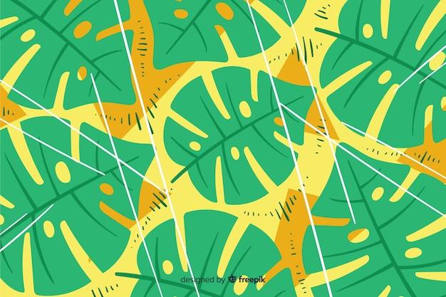 モンステラの葉の背景