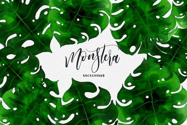 手描きモンステラの葉のフレームの背景