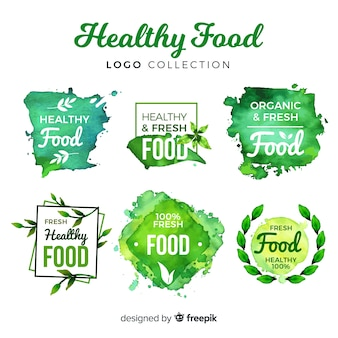 Набор акварели здоровой пищи логотип