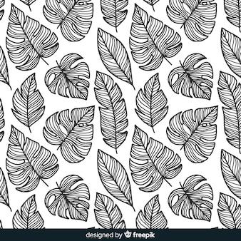 無色のモンステラの葉の背景