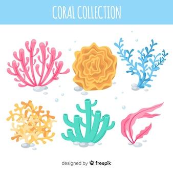 フラットサンゴコレクション