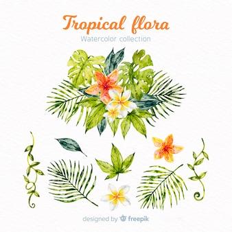 Тропические листья и цветы