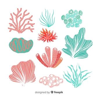 手描きサンゴコレクション