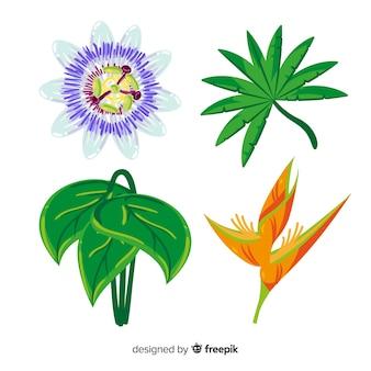熱帯の葉と花