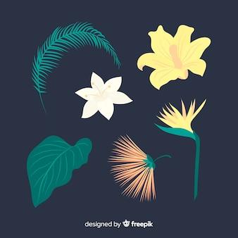 平らな熱帯の花と葉のパック