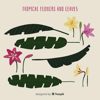 手描きの熱帯の花と葉