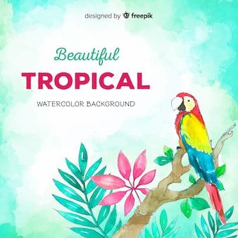 手描きの熱帯植物と鳥の背景