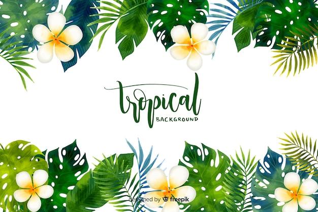 熱帯の水彩画の背景