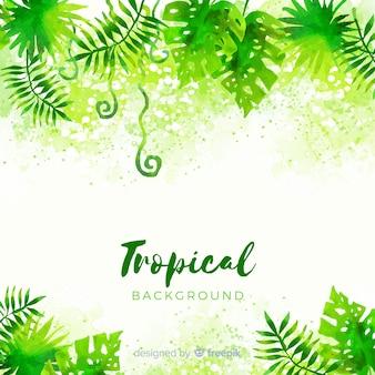 Акварель тропический фон