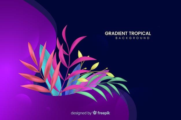 Градиент тропический фон