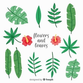Ручной обращается цветы и листья коллекции