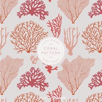Коралловый рисунок