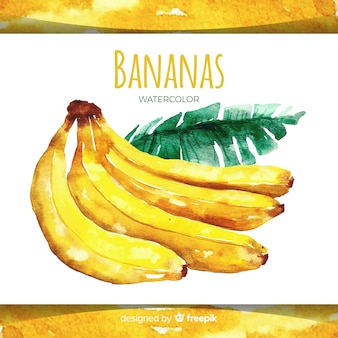 水彩の手描きのバナナの背景