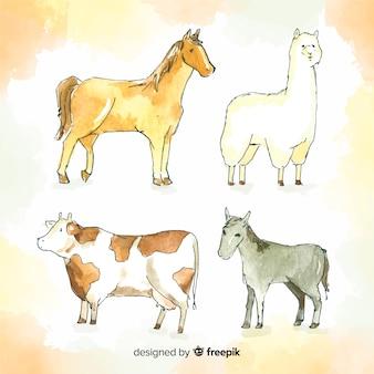 Акварельная ферма животных коллекция