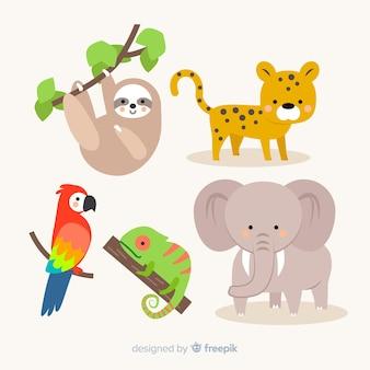 Плоский дизайн коллекции тропических животных