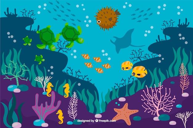 Плоский коралловый фон с рыбой и морскими звездами