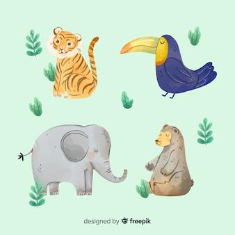 Коллекция акварели экзотических тропических животных