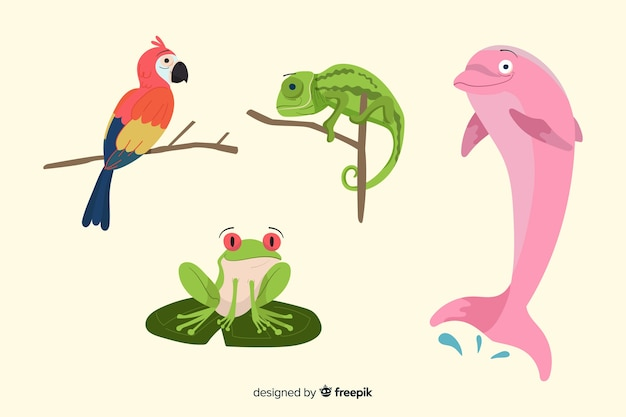 手描きの熱帯動物コレクション