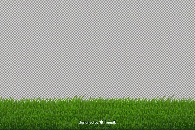 緑の芝生のボーダーリアルなスタイル