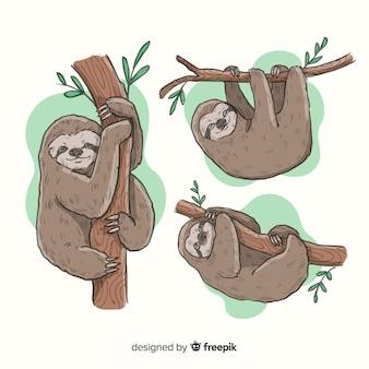 手描きのナマケモノのパック