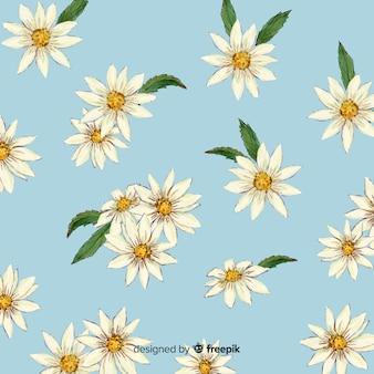 水彩のデイジーの花と葉の背景