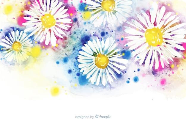 Красивая акварель ромашка цветочный фон
