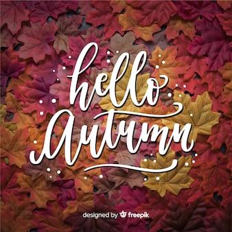 こんにちは写真付き秋レタリング