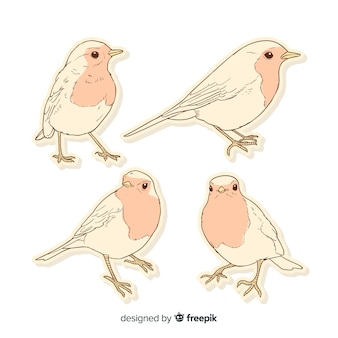 Стая рисованной птицы