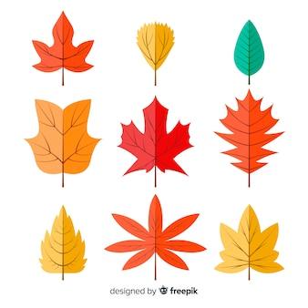 Коллекция осенних листьев плоский дизайн