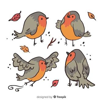 手描きの鳥のパック