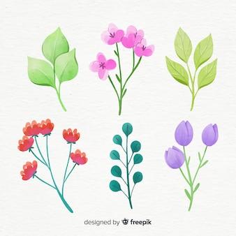 水彩風の花の枝コレクション