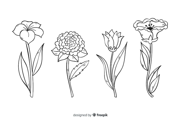 現実的な手描きの植物の花のコレクション