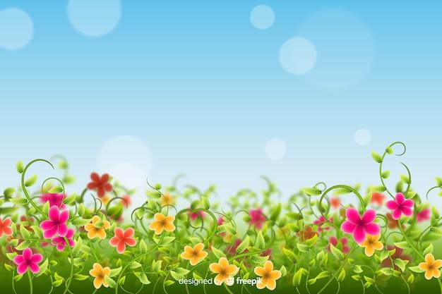 Красочное поле цветов фона