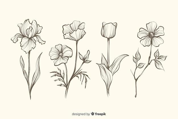 Коллекция реалистичных рисованной ботанических цветов