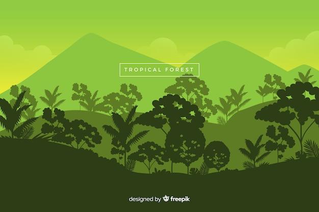 Панорамный вид на красивый тропический лес в зеленых тонах