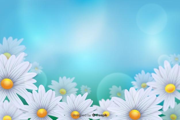 青い光の背景にデイジーの白い花