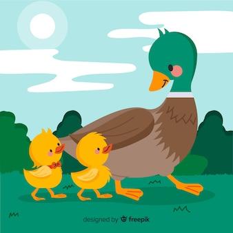 アヒルの子屋外で母鴨
