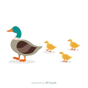 フラットなデザインの母鴨の手描き